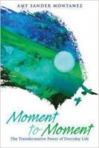 Moment to Moment: The Transformative Power of Everyday Life