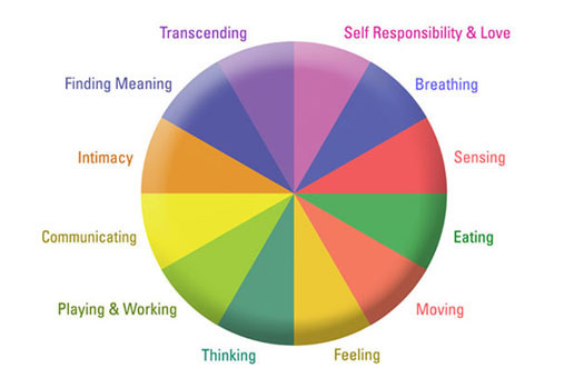 Wellness Inventory - Wellness Wheel